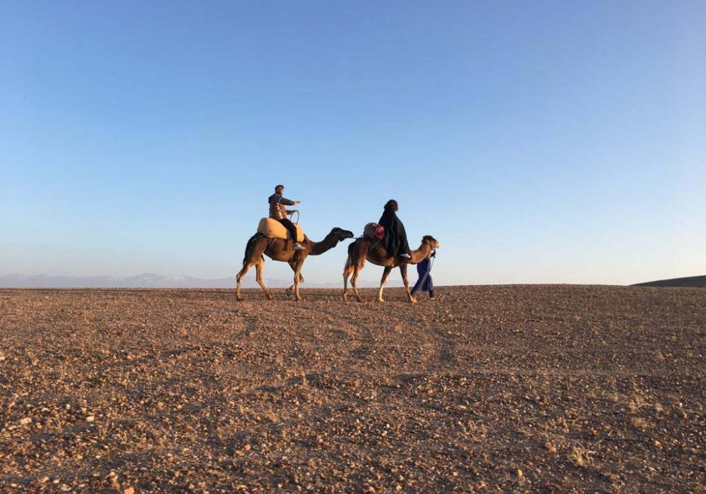 RIAD COCOON MARRAKECH   riad luxe medina, excursion quads buggy chameau marrakech